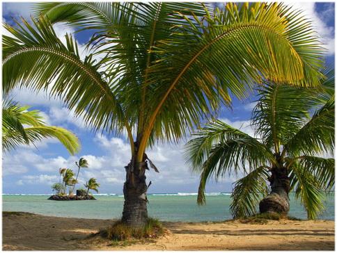 Купить элитный гамак-макраме Tahiti класса люкс